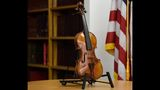 Pilot tells woman she can't carry on $20M violin